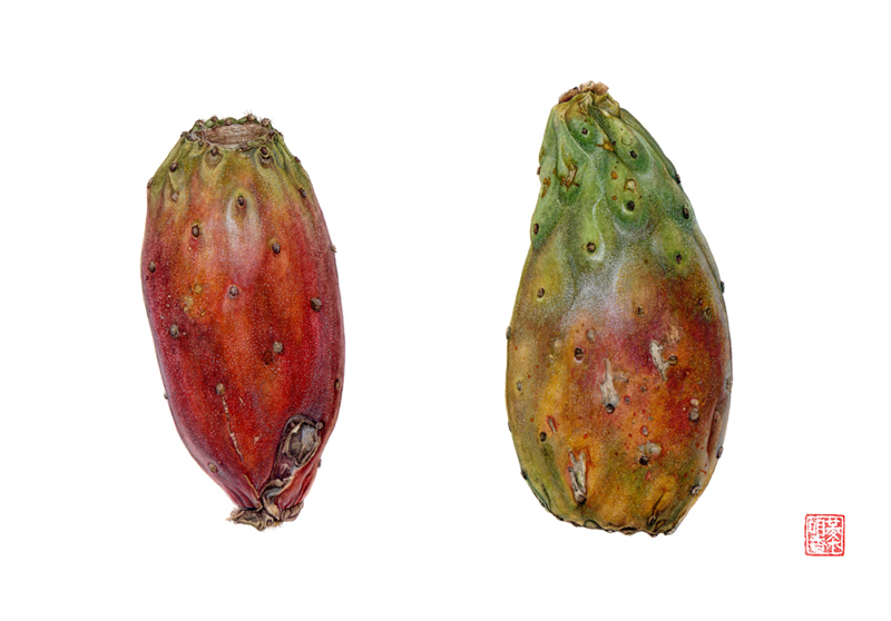 <strong>Cactus fruit (prickly pears cactus)</strong>